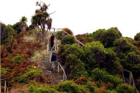 Hatchs-Hill-Lookout-Sandy-Point-Invercargill