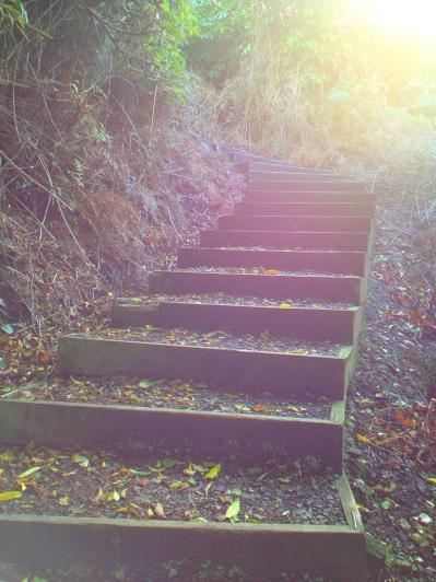 Glory path, Bluff