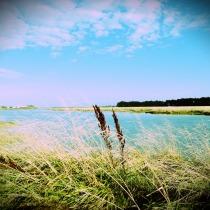waihopai river