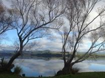 Lake Waihola 3
