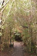 Mores reserve, Riverton