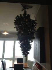 Colac Bay tavern's Christmas Tree!