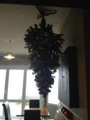 Colac Bay tavern's Christmas Tree!