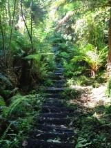 many many steep steps!