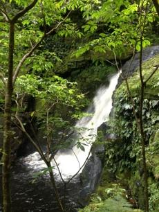 middle falls  McLean Falls