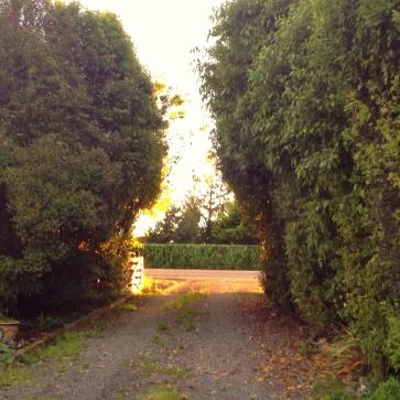 Sunny gateway
