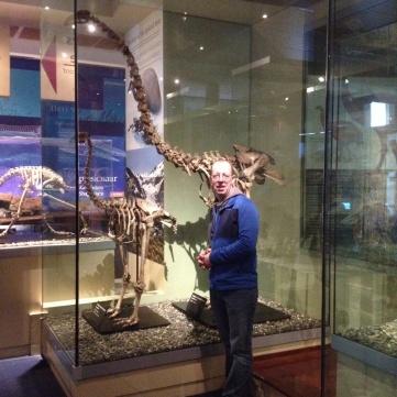 now extinct MOA bird!