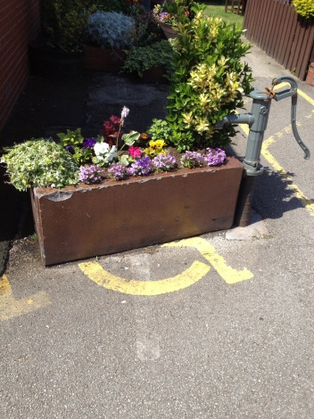 disabled flowers at this pub!