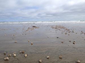 Orti beach