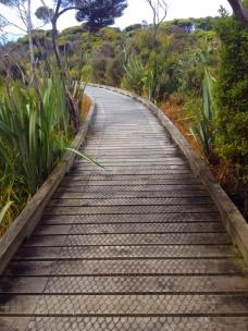 board walk to the 'ship graveyard'