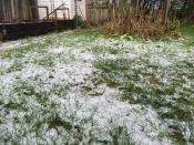 31 July: snow!