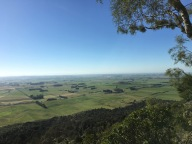 Forest Hill lookout