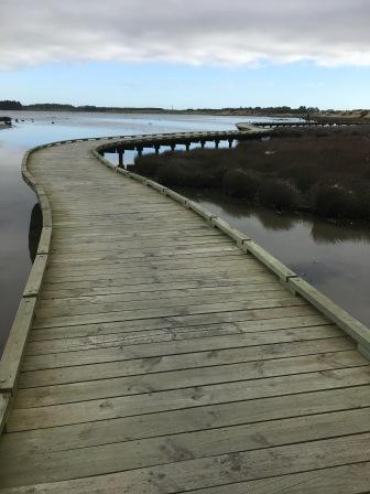 Roger Sutton Boardwalk, Estuary Walkway