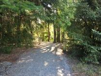 Ivon Wilson Scenic reserve, Te Anau